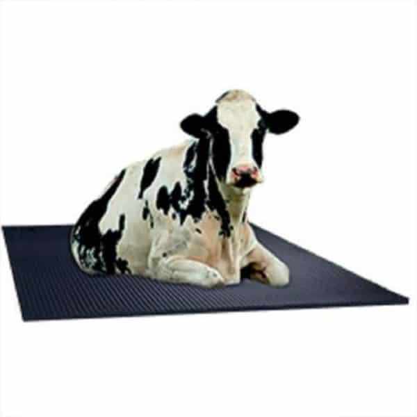 Duratuf Cow Mat Amobea